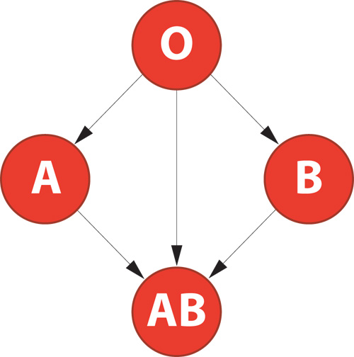 ABO compatibility rule